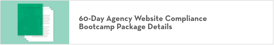 60-Day Agency Website Compliance 