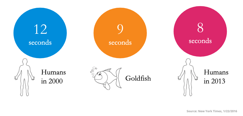 infographic on human attention span study. Humans in 2000 had an average 12 second attention span. goldfish had 9 seconds, humans studied again in 2013 had 8 seconds.